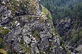 Cardinello Gorge, Via Spluga near Isola, Sondrio, Lombardy