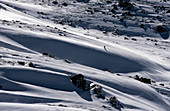 Off-piste skiing in the Thredbo ski area, NSW, Australia