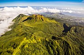France, Guadeloupe (French West Indies), Basse Terre, Saint Claude, the clear top of La Soufriere, nicknamed the vie madanm in Guadeloupean Creole or the old lady in French, is an active volcano located in the national park (aerail view)