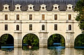France, Indre et Loire, castle of Chenonceau, built between 1513 - 1521 in Renaissance style, over the Cher river