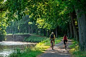 France, Morbihan, Gueltas, cyclist on the towpath along the canal from Nantes to Brest