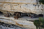 France, Dordogne, Perigord Noir, Vezere Valley, prehistoric site and decorated cave listed as World Heritage by UNESCO, Peyzac le Moustier, La Roque Saint Christophe Cliff, troglodytic site dating of the Prehistory, medieval stack machines reconstitution under the rock shelter (aerial view)