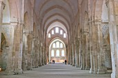 France, Cote d'Or, Marmagne, Fontenay Cistercian Abbey (1118), listed as World Heritage by UNESCO, the church