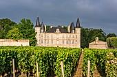 Frankreich, Gironde, Pauillac, Chateau Pichon-Longueville, 73 ha großes Weingebiet (AOC Pauillac)