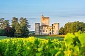 France, Gironde, Mazeres, medieval castle of Roquetaillade
