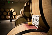 France, Drome, Tain l'Hermitage, Rhone valley, Wine making cooperative cellar of Tain