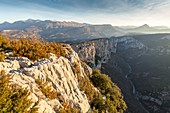 France, Alpes de Haute-Provence, regional natural reserve of Verdon, Grand Canyon of Verdon, cliffs of the Barres of Escalès seen by the belvedere of the Dent d'Aire