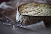 France, Haute Savoie, Abondance valley, Chatel, the Abondance vacherin cheese