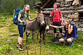 Group of hikers meets donkeys below Rif. Poncione di Braga, Trekking del Laghetti Alpini, Ticino, Switzerland