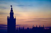 Giralda bell tower at sunset in Seville, Spain