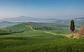 Straße durch die Hügel in der Toskana, Italien