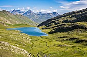 France, Alpes de Haute Provence, national park of Mercantour, Haute Hubaye, the lake of Lauzanier (2284m)