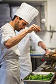 France, Morbihan, La Gacilly, hotel the Gree des Landes, kitchen of the restaurant Jardins Sauvages AUTORISATION NECESSAIRE AVANT PUBLICATION
