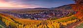 Frankreich, Haut-Rhin, Elsässer Weinstraße, Riquewihr mit der Bezeichnung 'Les Plus Beaux Villages de France' (schönste Dörfer Frankreichs)