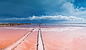 France, Aude, Regional Natural Park of Narbonne in the Mediterranean, Gruissan, Les Salins, Landscape of salt pans under a stormy sky