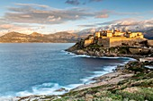 France, Haute Corse, Balagne, Calvi, the ramparts of the Genoese citadel, in background the massif of Monte Grosso