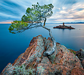Île d'Or, in front of Cap Le Dramont, Var, Provence-Alpes-Côte d'Azur, Côte d'Azur, Frankreich