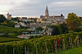 Frankreich, Gironde, Saint-Emilion, UNESCO Weltkulturerbe, Gesamtansicht der mittelalterlichen Stadt, die von der monolithischen Kirche aus dem 11. Jahrhundert dominiert wird, die von den Reben aus gesehen vollständig in den Felsen gehauen ist.