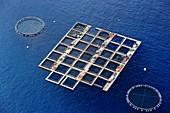 France, Corse du Sud, Belvedere Campomoro, marine farm (aerial view)