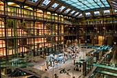 France, Paris, Jardin des Plantes, National Museum of Natural History, Evolution Gallery, architect Paul Chemetov, scenography by René Allio