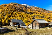 France, Hautes Alpes, Brianconnais in fall, Claree valley, Verney Chalets