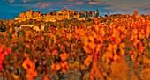 Frankreich, Aude, Carcassonne, mittelalterliche Stadt Carcassonne