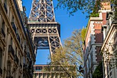 France, Paris, the Eiffel Tower and Parisian buildings