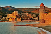 France, Pyrenees Orientales, Collioure, royal castle and church of Our Lady of the Angels