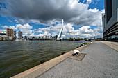 View over the Nieuwe Maas to the Erasmus Bridge, Rotterdam, Holland.