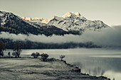 Lake Silvaplana at fog in sunrise, in the Upper Engadine, St. Moritz in the Engadine, Switzerland