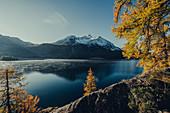 Silsersee bei Sonnenaufgang, Oberengadin, Sankt Moritz im Engadin, Schweiz, Europa