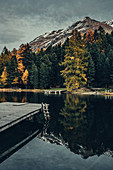Herbstlicher Wald am Lej Nair, im Oberengadin, Engadin, Schweiz\n\n\n\n