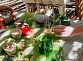 Zubereitun von Naturheilmittel, Kokomo Private Island, Fidschi-Inseln, Ozeanien