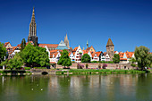 View across the Danube to Ulm with Ulm Minster, Neu-Ulm, Danube Cycle Path, Swabia, Bavaria, Germany