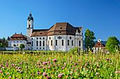 Wieskirche, Pfaffenwinkel, UNESCO Welterbe, Oberbayern, Bayern, Deutschland
