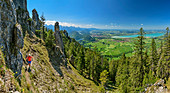 Panorama with woman hiking up to Tegelberg, Tannheimer Berge and Forggensee in the background, Tegelberg, Ammergau Alps, Swabia, Bavaria, Germany
