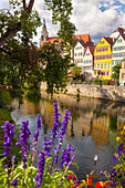 Tübingen, view of row of colored houses on the Neckar and Collegiate Church, Baden Württemberg, Germany