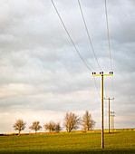 Electricity pylons on field in evening light, Bavaria, Germany
