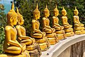 Lined up golden Buddha statues at the top of Wat Koh Phayam Temple, Koh Phayam. Thailand