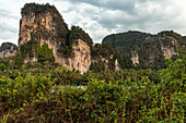 High karst rocks at Phang Nga Bay. Krabi region, Thailand