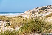 "Dunes on the beach ""Praia d'El Rei, Amoreira, Portugal"