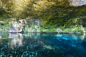 Gran Cenote - open karst cave in Tulum filled with water. Quintana Roo, Yucatan Peninsula, Mexico