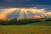Sonnenuntergang bei Pluwig, Hunsrück, Rheinland-Pfalz, Deutschland