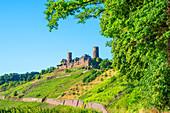 Thurant Castle near Alken, Moselle, Rhineland-Palatinate, Germany