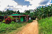 """Landscape and rural life on hiking trail in the Vinales valley (""""Valle de Vinales""""), Pinar del Rio province, Cuba"""