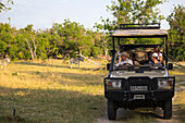 A family and guide in a safari jeep in a game reserve watching a couple of Burchell's Zebra.