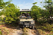 Safari jeep with a guide and passengers on a narrow track through scrub.