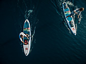 Aerial shot of two people on paddleboards.