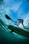 A shot of a person on a paddleboard taken from underwater.