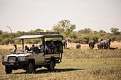 A jeep with passengers observing elephants gathering at water hole.